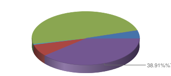 Pie chart generated with Google Chart API